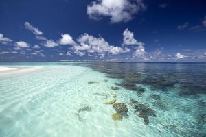 Tropical Lagoon and Coral Reef, Baa Atoll, Maldives, Indian Ocean, Asia by Sakis Papadopoulos