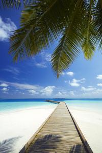Wooden Jetty Out to Tropical Sea, Maldives, Indian Ocean, Asia by Sakis Papadopoulos
