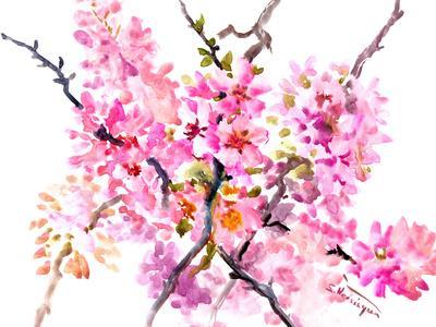 https://imgc.artprintimages.com/img/print/sakura-2_u-l-f98tyr0.jpg?p=0