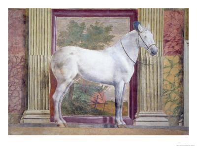 Sala Dei Cavalli, Detail Showing Portrait of a Grey Horse from the Stables of Ludovico Gonzaga III-Giulio Romano-Giclee Print