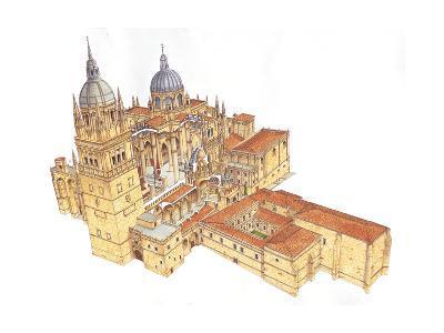 Salamanca Cathedral, Spain-Fernando Aznar Cenamor-Giclee Print