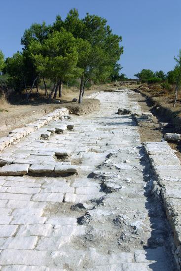Salamis, North Cyprus-Peter Thompson-Photographic Print
