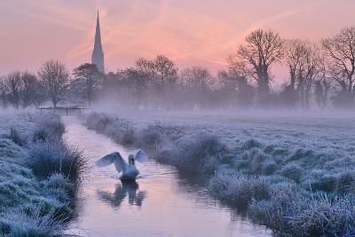 Salisbury Water Meadows-Andreas Jones-Photographic Print