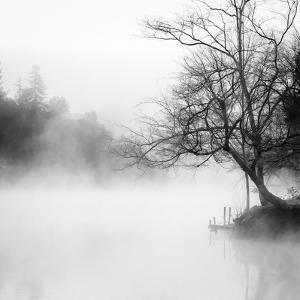 Fog on the Lake 1 by Sally Linden