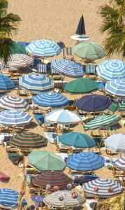 Umbrellas II by Sally Linden