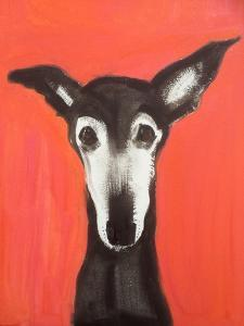 Galgo on Red by Sally Muir