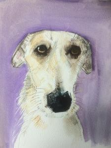 Lurcher by Sally Muir