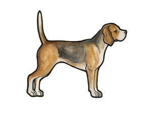 Beagle by Sally Pattrick