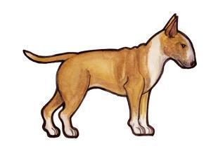 English Bulldog 2 by Sally Pattrick