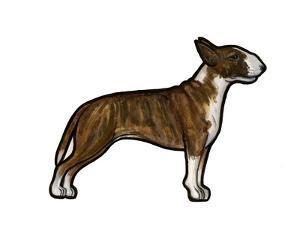 English Bulldog 3 by Sally Pattrick