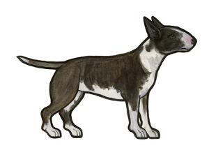 English Bulldog by Sally Pattrick