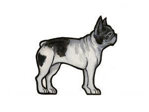 French Bulldog by Sally Pattrick