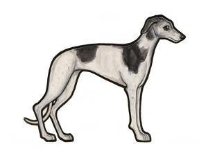 Greyhound by Sally Pattrick