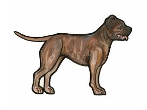 Staffordshire Bull Terrier by Sally Pattrick