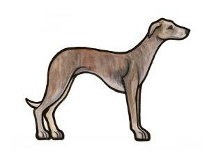 Whippet by Sally Pattrick