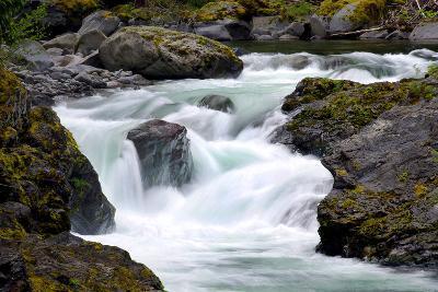 Salmon Cascades-Douglas Taylor-Photo