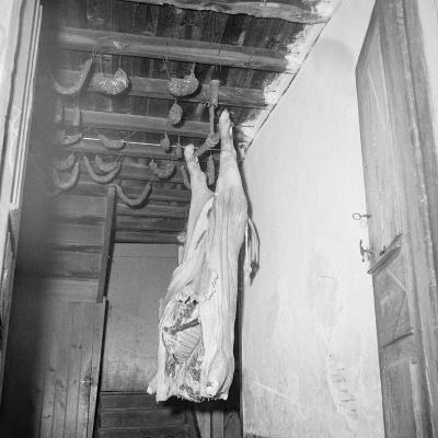 Saloir--Giclee Print