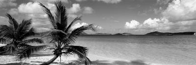 Salomon Beach Us Virgin Islands--Photographic Print