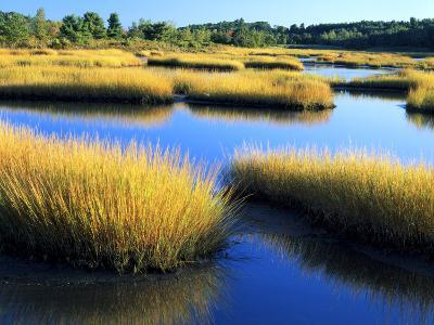 Salt Marsh at Sunrise, Estuary of New Meadow River in Early Autumn, Maine, Usa-Scott T^ Smith-Photographic Print