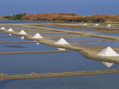 https://imgc.artprintimages.com/img/print/salt-pans-in-marshes-ile-de-re-poitou-charentes-france-europe_u-l-pxuml70.jpg?p=0