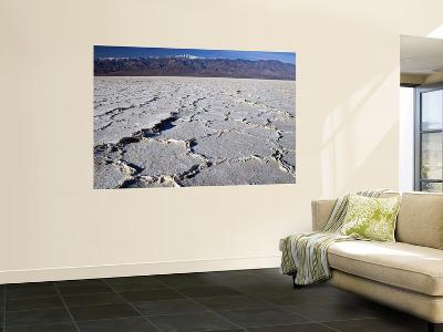 Salt Plates with Panamint Range in Distance, Death Valley, Californi-Witold Skrypczak-Wall Mural