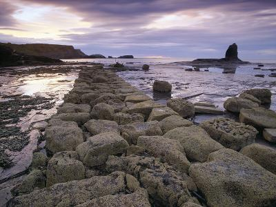 Saltwick Bay Is South of Whitby and the Distinctively Shaped Black Nab Rock- LatitudeStock-Photographic Print
