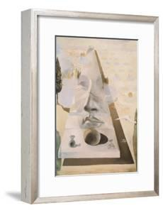 Apparition of the Face of Aphrodite by Salvador Dal?