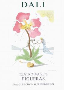 Teatro Museo Figueras 3 by Salvador Dalí