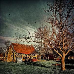 Empty Old Barn in America by Salvatore Elia