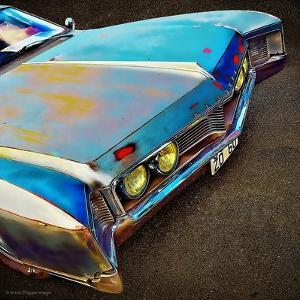 View of Bonnet of 1950's Car by Salvatore Elia