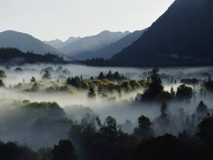 A Heavy Fog Fills a Valley in the Olympic Mountains by Sam Abell