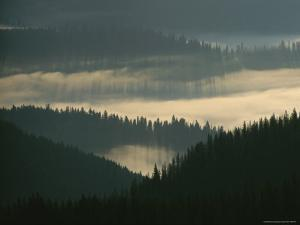 Fog Shrouds the Tree-Covered Slopes of the Bitterroots by Sam Abell