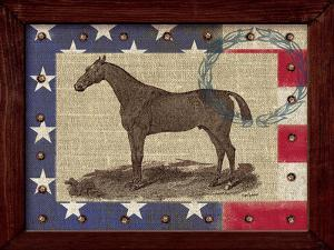 American Equestrian by Sam Appleman