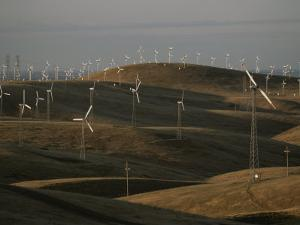 Rows of Windmills on Open Hills Produce Alternative Sources of Energy by Sam Kittner