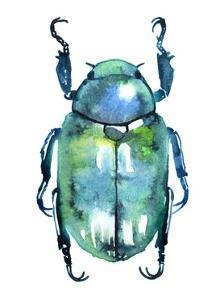 Chromatic Blue Beetle by Sam Nagel