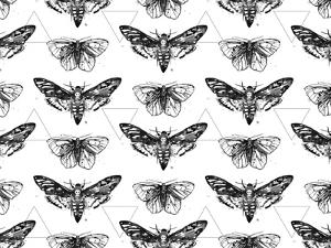 Geometric Moths by Sam Nagel