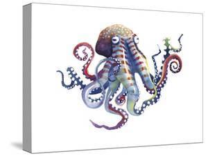 Octopus by Sam Nagel