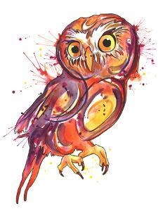 Red Owl by Sam Nagel