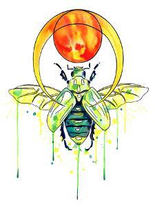 Scarab Beetle by Sam Nagel