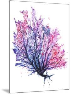 Sea Fan Purple by Sam Nagel