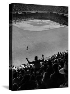 Fan Rooting for His Team in a Packed Stadium During Brooklyn Dodger Game at Ebbets by Sam Shere