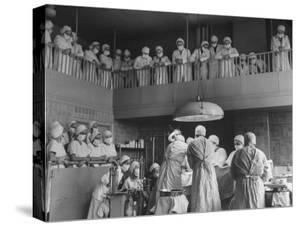 Women Medical Students from Woman's Medical College of Pennsylvania by Sam Shere