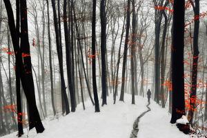 Through Autumn and Winter by Samanta
