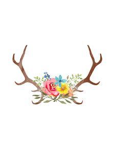 Floral Antlers by Samantha Ranlet
