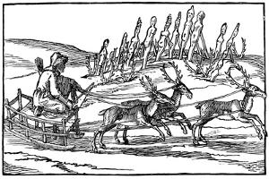 Samoyed Travelling on a Sleigh Pulled by Reindeer, Late 16th-Early 17th Century