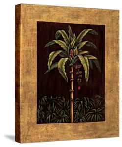 Tropical Paradise II by Samuel Blanco