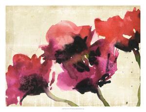 Blossom View I by Samuel Dixon