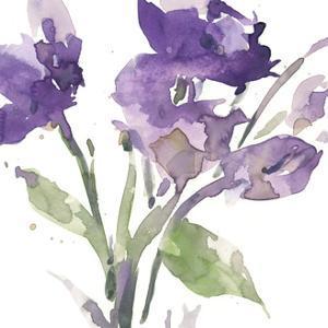 Garden Blooms I by Samuel Dixon