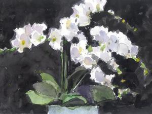 Something Floral VII by Samuel Dixon