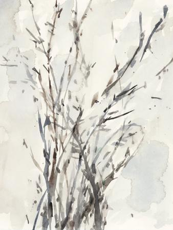 Watercolor Branches I